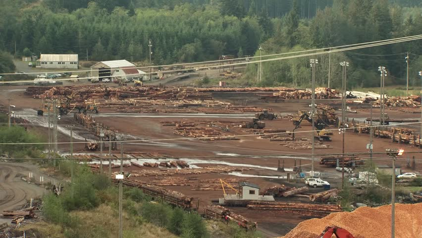Time lapse of tractors at work in a British Columbian logging mill. #5105105