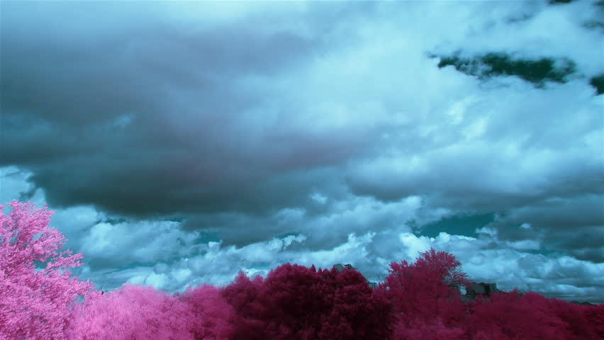 blue sky and purple trees infrared time lapse, infrared filter 680 nm