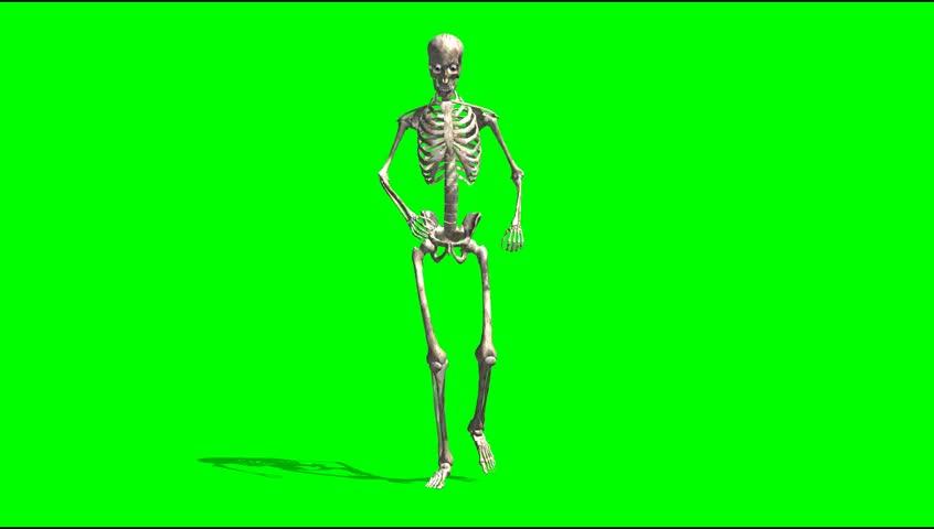 Skeletal Rage Walk Animation Green Stock Footage Video (100% Royalty-free)  5281745 | Shutterstock