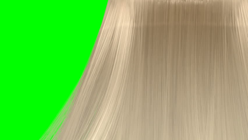 An abstract view of a bunch of long blonde hair blowing in various directions on a green screen background