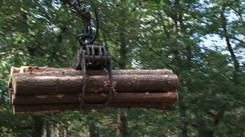 logging forwarder stacking timber - close up gripper