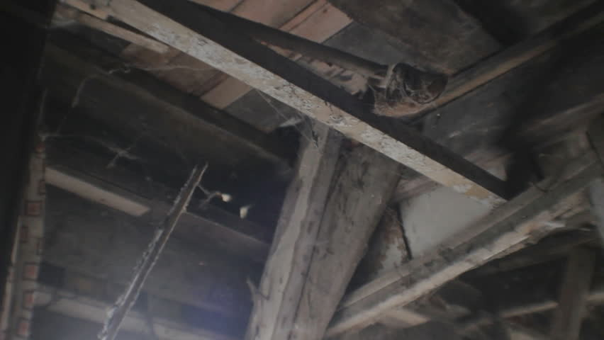 Low angle slight vibrating slider shot zooming past a beam with a broom of a scary spooky deteriorating wooden ceiling covered with spider webs.