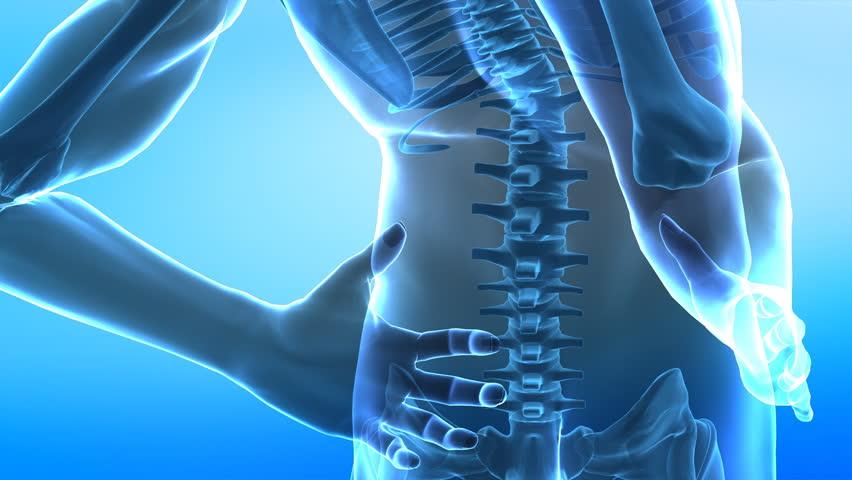 Human Spine Anatomy Closeup Stock Footage Video (100% Royalty-free ...