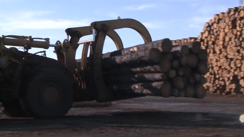 LOG PICKER DOZER AT LUMBER MILL LOGGING TRACTOR AND TREES WITH HEAVY EQUIPMENT HD HIGH DEFINITION STOCK VIDEO FOOTAGE 1080 1920X1080 | Shutterstock HD Video #5719643