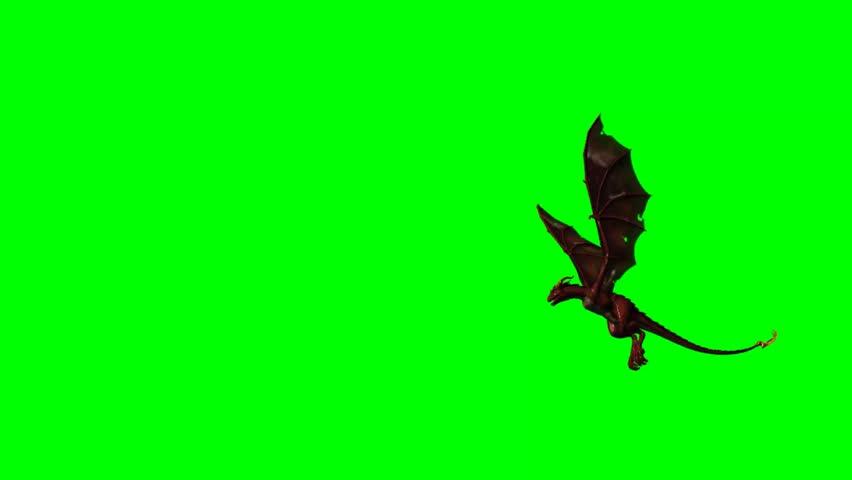 flying dragon on green screen