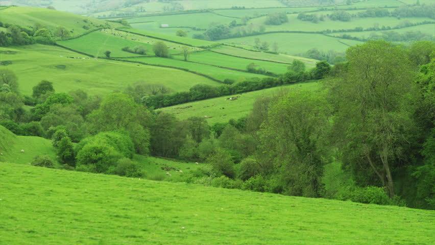 Wiltshire, UK countryside