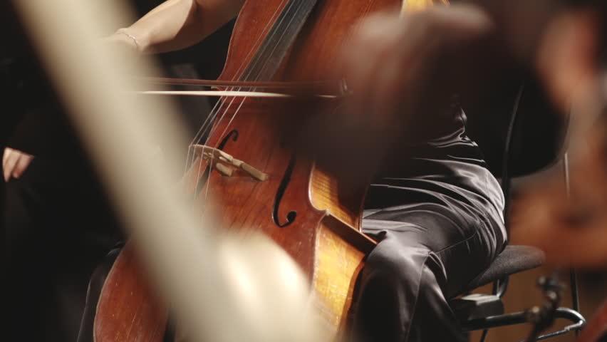 violin instruments, symphony orchestra stock footage