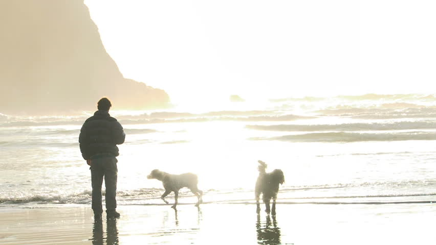 Man and two dogs enjoy the sun shine at Oregon beach.