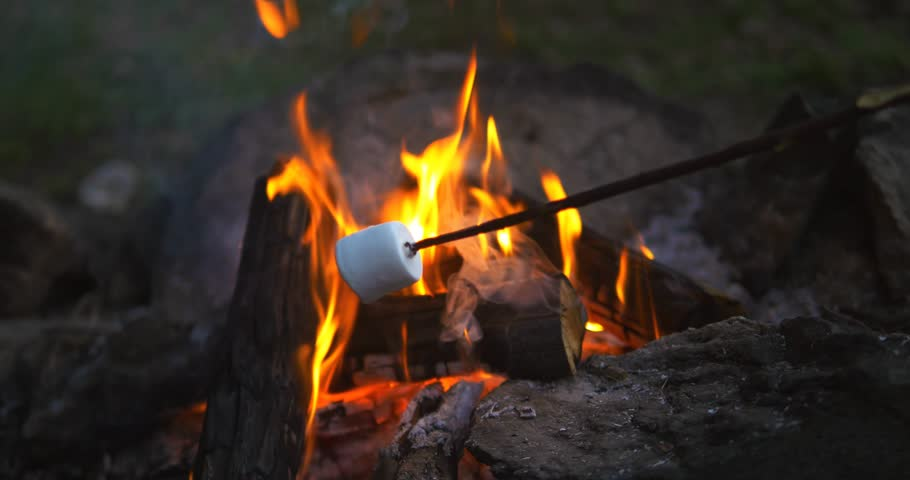Stock Video Of Marshmallows Over Campfire