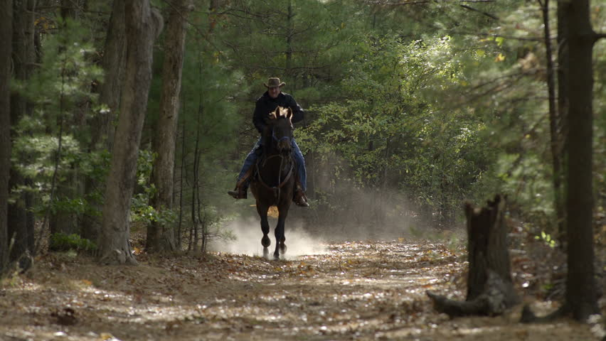 A man rides a galloping horse through the woods towards the camera in slow motion