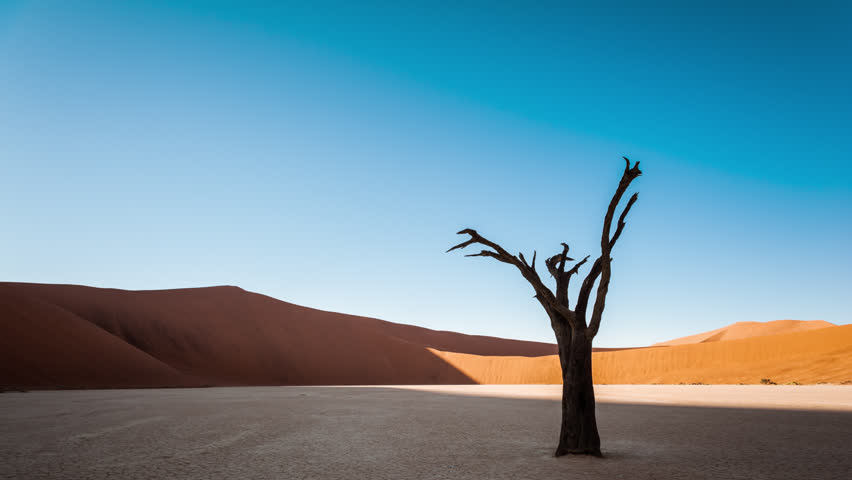 Static timelapse of a landscape scene in Deadvlei, Namibia with a solidified tree in a white clay pan as the sun rises over the red sand dunes. | Shutterstock HD Video #6685535
