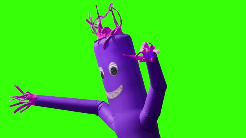 A looping green screen shot of a purple wacky waving inflatable arm flailing tube man.  Chroma key with optional luma matte.