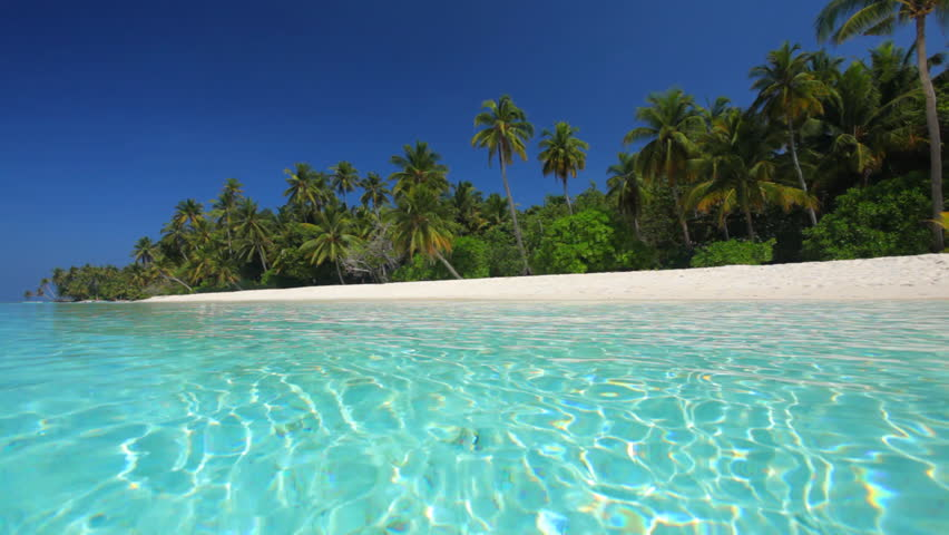 Lagoon Tropical Island: Palm Trees Over Tropical Lagoon With White Beach In