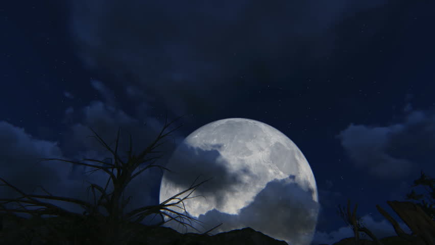 Moon light and stars night background with trees nature art images ...