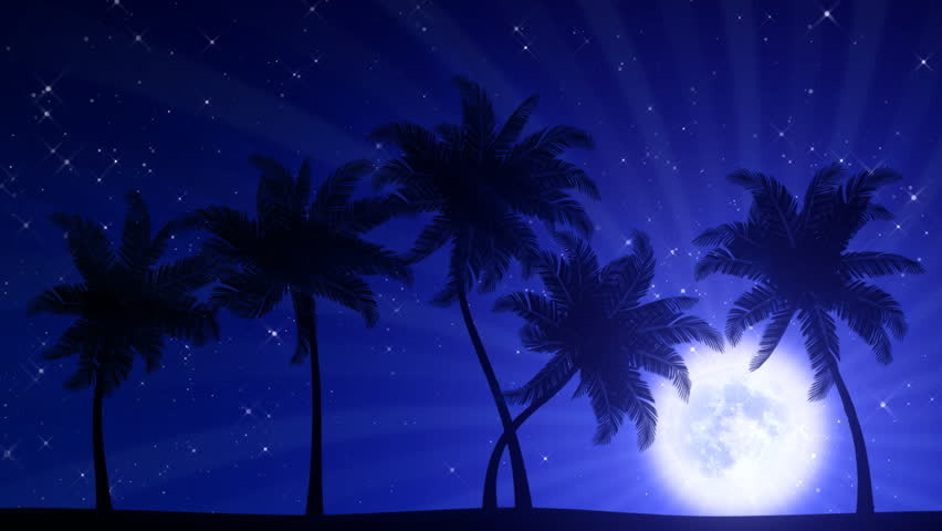 Palm Trees swaying in the wind with Moon (Animated HD Background)
