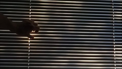 person peeking through blinds at bright sunlight