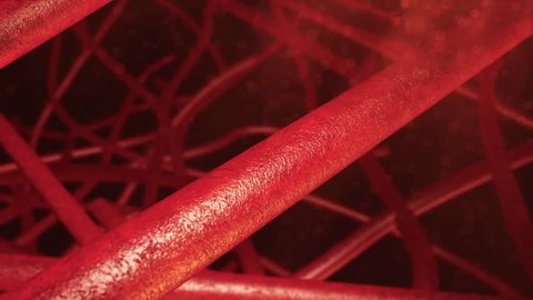 Small blood vessels shown in a small cluster together showing red blood cells in a red atmospheric background