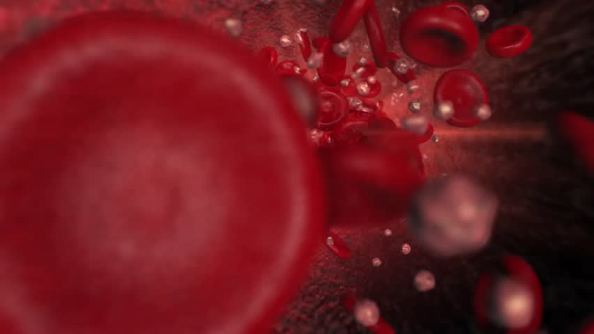 Travelling shot through the bloodstream turning into a panning shot showing red blood cells and ketones in the vessel