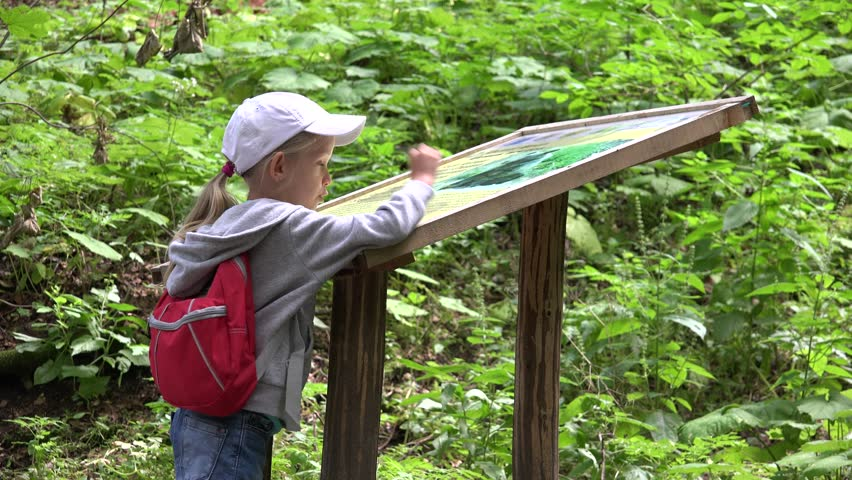 Ultra HD 4K Child Reading Map, Informations On A Trail In ...