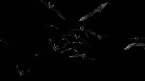 Bat Swarm - Front Flying Transition 2 - Alpha Channel - Aggressive vampire bats for your horror, Halloween, grunge, fairytale and fantasy projects… 3D animation with transparent back...