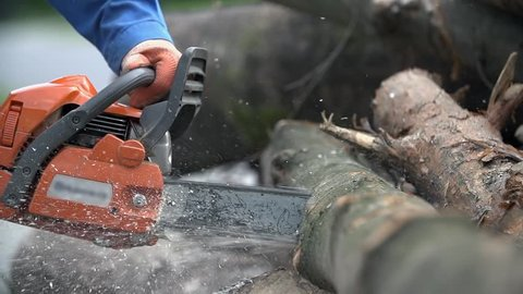 Cutting through wood with chainsaw in slow motion. Close up of man in blue work clothes and protective gloves holding motorized chainsaw.