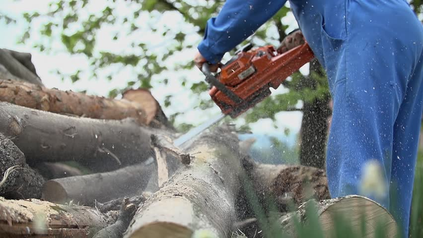 Chainsaw Away Branch from Log Stock Footage Video (100% Royalty-free)  7413925   Shutterstock