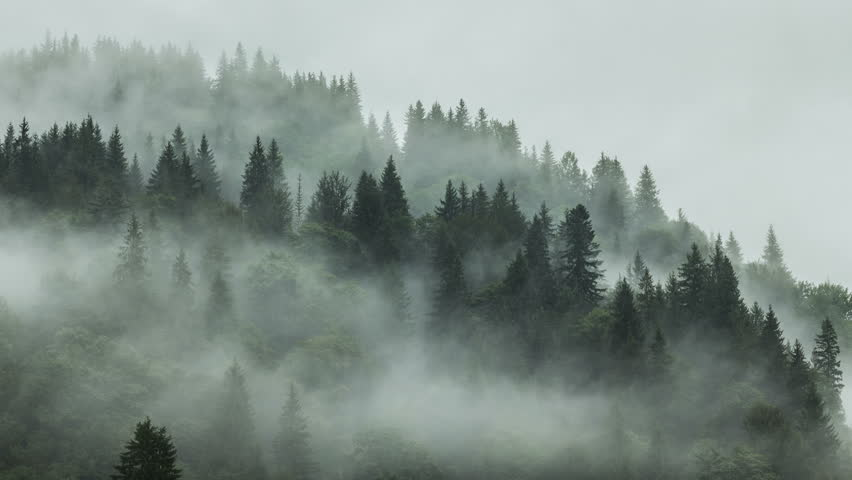 Resultado de imagen de timelapse of misty fog blowing over mountain
