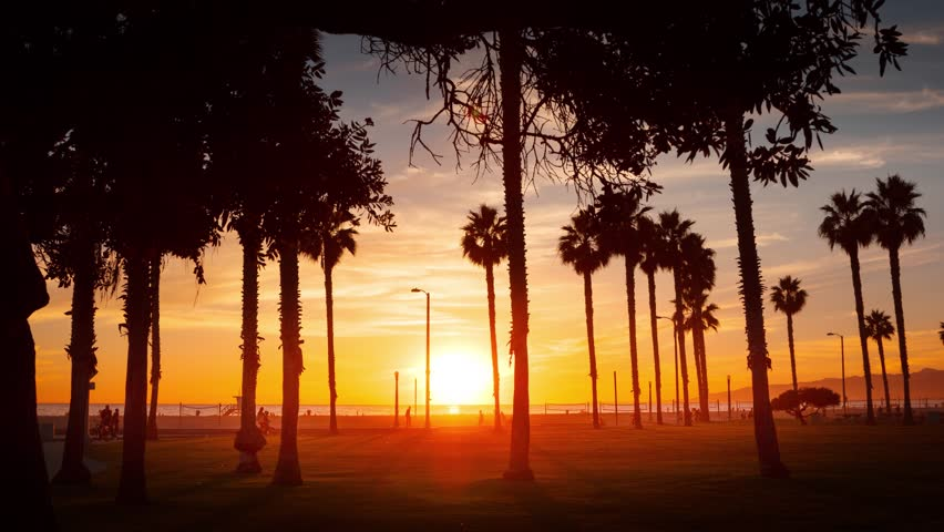 Silhouettes of palm trees against sunset sky at ocean beach in Santa Monica, California. Timelapse in motion (hyperlapse). | Shutterstock HD Video #7517362