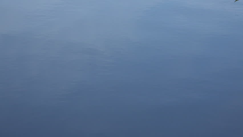 Interesting Calm Water Texture Surface Of Shot In On Inspiration