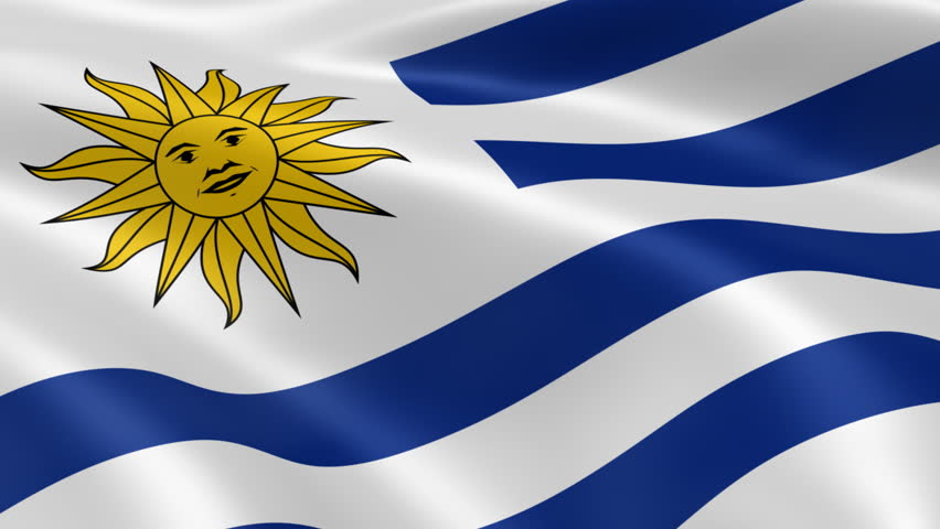 Uruguayan Flag In The Wind Part Of A Series Stock Footage Video - Uruguay flag