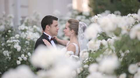 Young newlyweds are in place filled with love, tenderness and beauty