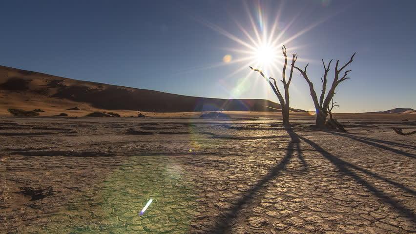 Sunset time lapse sun going down behind a dead tree at sossusvlei dead vlei namib desert namibia global warming