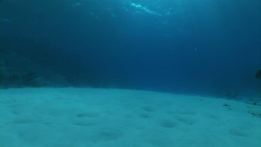 Sunlight Reflected On Ocean Floor