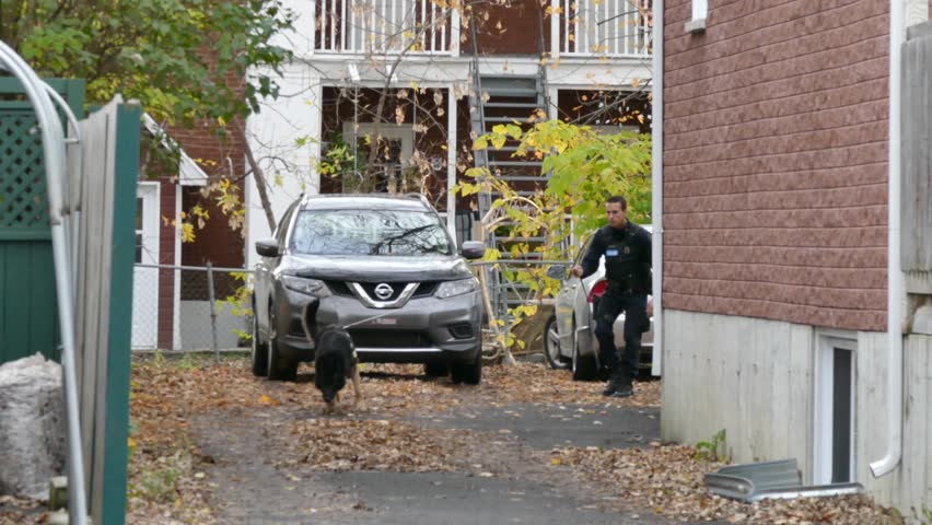 Montreal, Canada - October 2014 - 4K UHD - Group of policemen with K9 dog searching in residential building's driveway