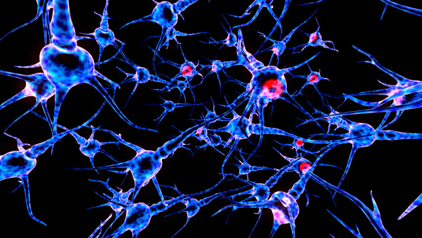 Neuron network. Neuron structure sending electric impulses and communicating with each other. 3D animation. | Shutterstock HD Video #7872442