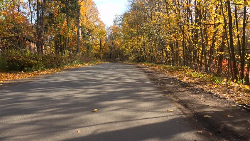 Autumn forest. Travel by car on the road in the fall. Shot in 4K (ultra-high definition (UHD)), so you can easily crop, rotate and zoom, without losing quality! Real time.