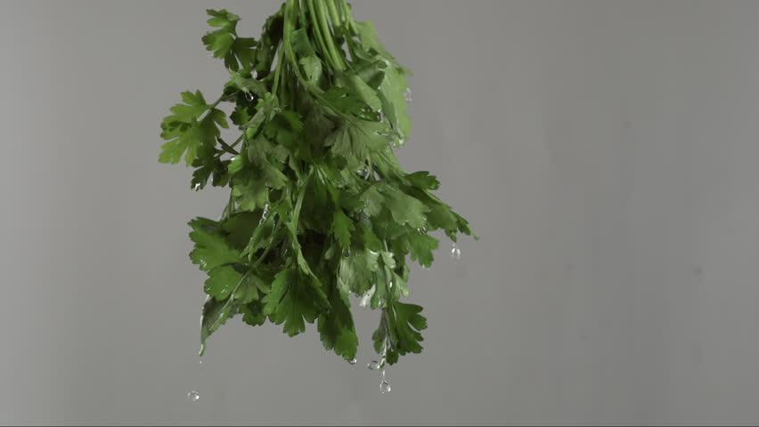 Fresh parsley swirls through the air
