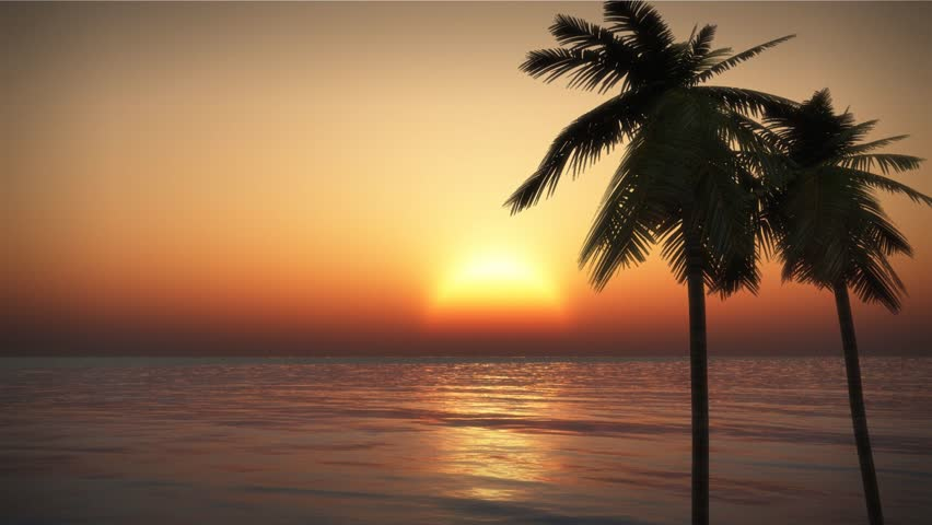 Tropical Sunset With Palm Trees Silhouette At Beach, Woman