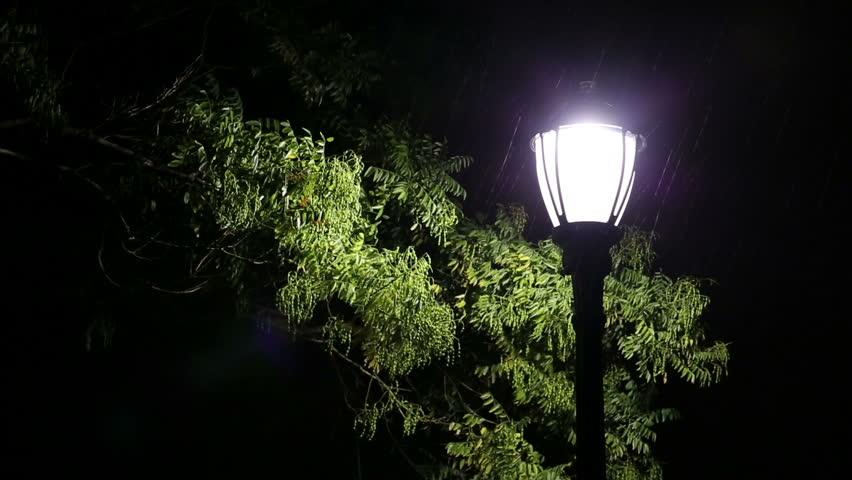 Rain On Street Lamp At Night Stock Footage Video 8059645