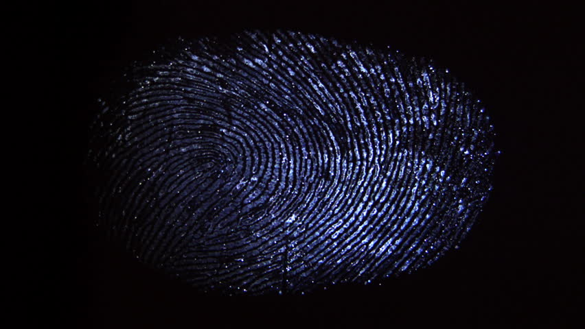 A ray of light finds fingerprints. Crime scene investigation #8340355