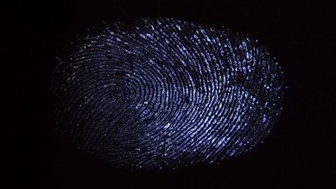 A ray of light finds fingerprints. Crime scene investigation