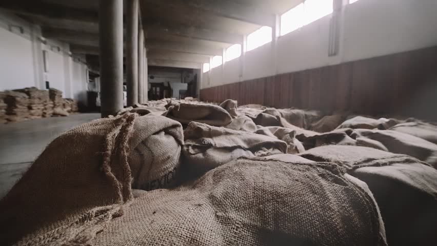 Workers accommodate a bunch of the coffee sacks inside factory of cereals