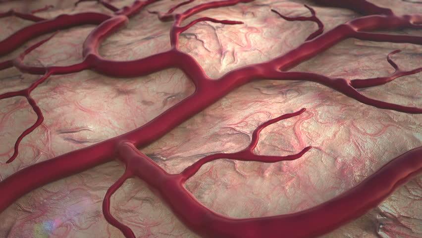 Header of capillary