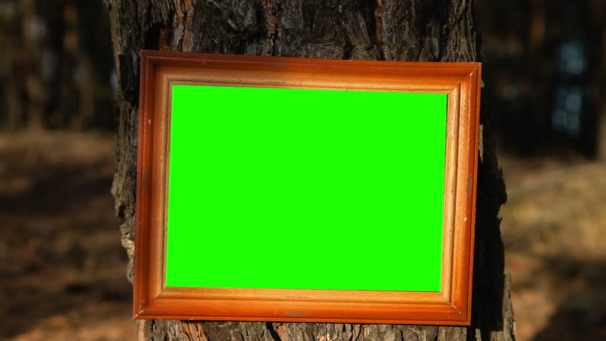 single picture frame with green screen on side table  with