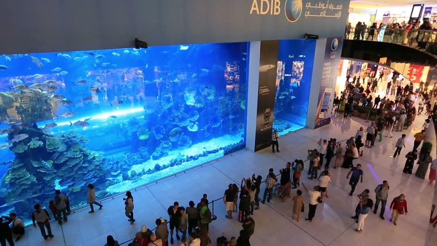 Afbeeldingsresultaat voor aquarium dubai mall