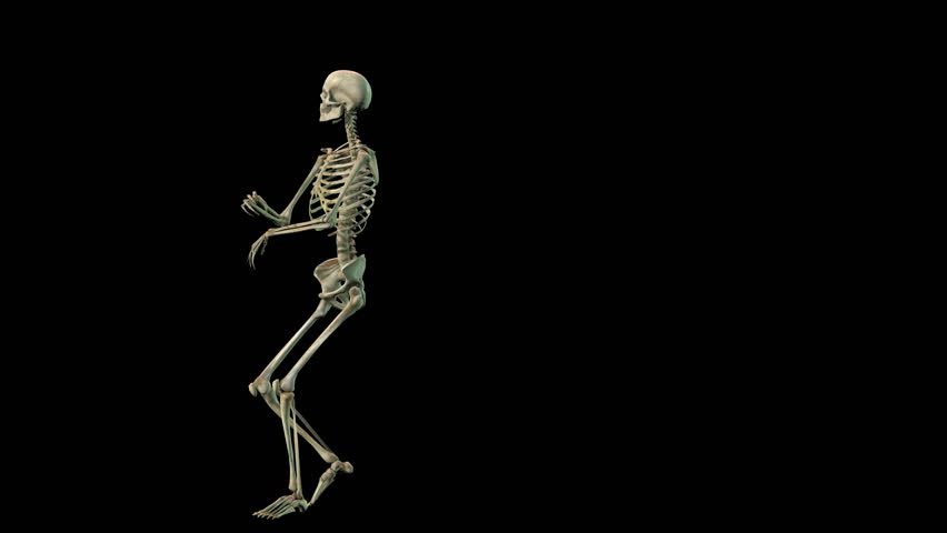 slow motion animation of a running human skeleton. hd 1080p loop, Skeleton