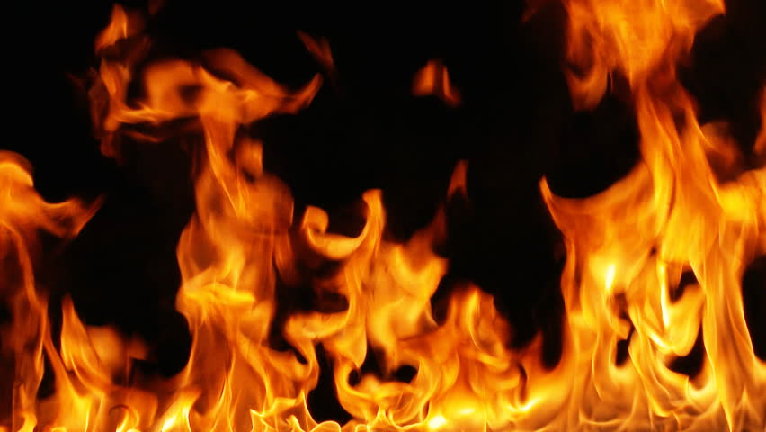 Close up of fire | Shutterstock HD Video #8733985
