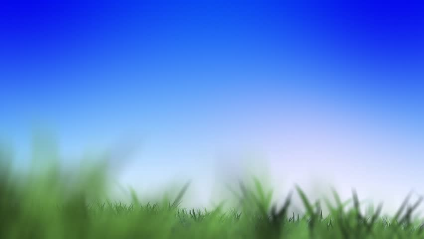green grass field animated. Stock Video Of Colorful Green Field And Sky Blue   8898235 Shutterstock Grass Animated E