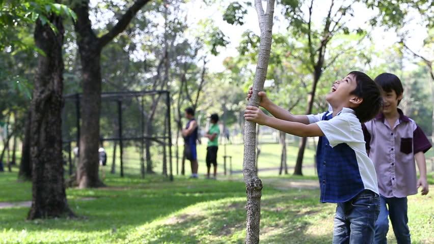Little boy shake the small tree to keep balloon | Shutterstock HD Video #8928025