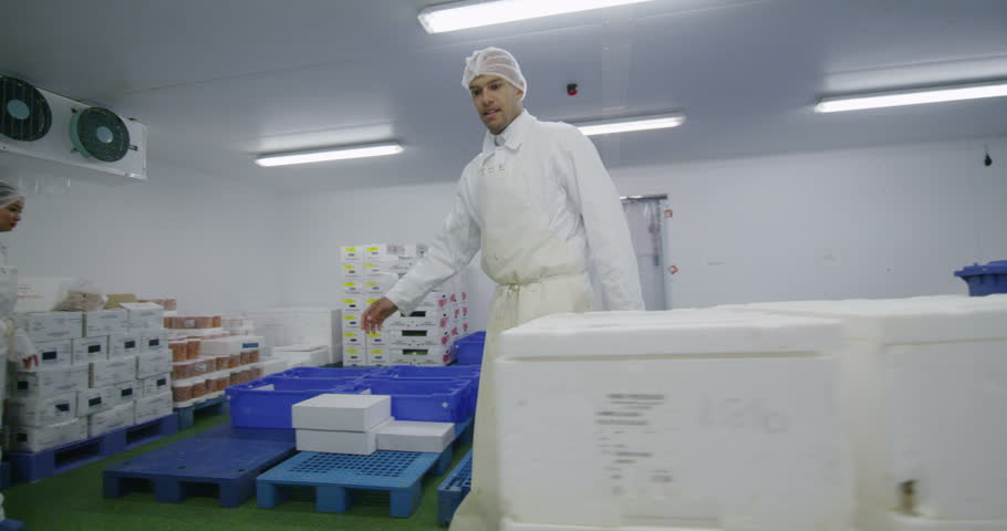 4K Workers packing boxes of fresh fish in a seafood processing factory